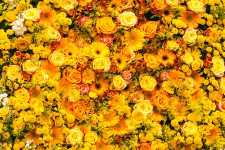 Beautiful yellow roses herberas and chrysanthemum background Standard-Bild - 119118722