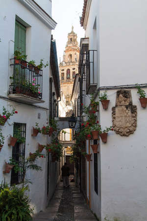 Narrow street with flowers in Cordoba,Spain photo