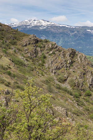 Mediterranean vegetation at mountain landscape photo