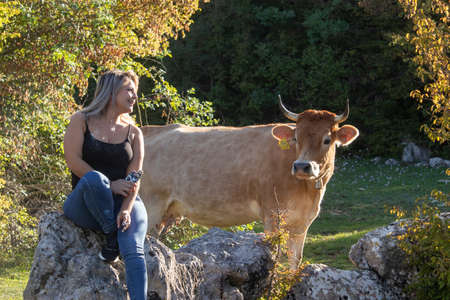 Blonde girl sitting on a rock hiking through the nature, looking at an orange cow thats right next to her. Cow looking back in confusion and excitement