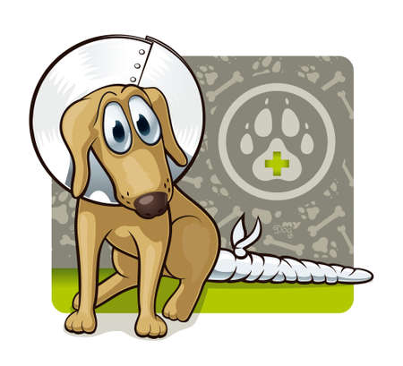 veterinary: Dog at the doctor s  Cute illustration of first veterinary assistance dog