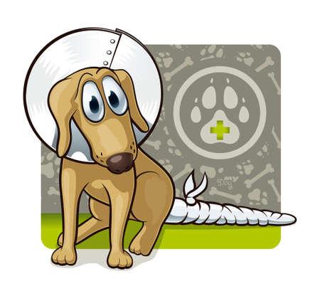 obvaz: Pes u lékaře s Roztomilé ilustrace první veterinární asistenčního psa Ilustrace