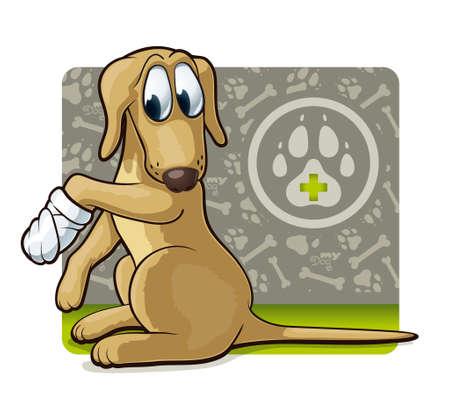 медик: Симпатичные собаки на иллюстрации врача с первой ветеринарной помощи собаке