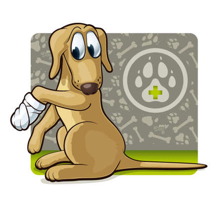 wound: Dog at the doctor s  Cute illustration of first veterinary assistance dog