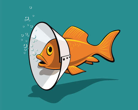 An amusing illustration of the unusual use of ordinary things for example the treatment of fish Stock Vector - 16460938
