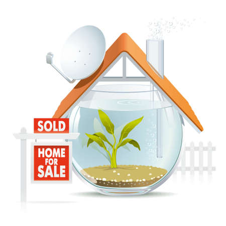 sold small: Illustration of funny home as cozy aquarium for fish to be sold