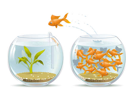 Illustration of fish jumping out of the crowded aquarium into a new life
