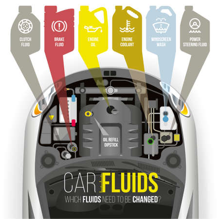 Which fluids need to be changed under the hood of the car? Illustration