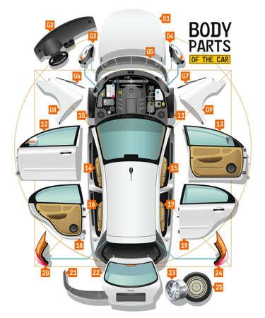 Des parties d'un corps de la voiture blanche sont étalées sur un sol comme analyse