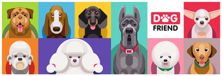 Multi-colored collection of dog faces of different breeds in one set. Illustration of funny cartoon dogs in trendy flat style. Standard-Bild - 133352070