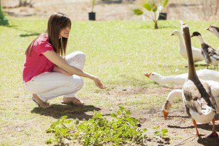 Pretty young woman feeding ducks on a sunny day photo