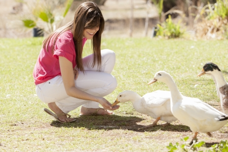 Gorgeous young woman feeding ducks at a farm photo