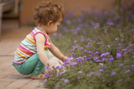 Beautiful baby girl picking flowers in the backyard photo