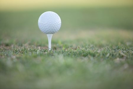 golf tee: Closeup of a golf ball with very shallow depth of field