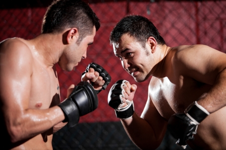 Portrait of a couple of mixed martial arts fighters during a fight Stock Photo