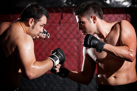 mixed martial arts: Young men wearing gloves and ready to begin a mixed martial arts fight in a fighting cage