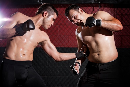 Strong mixed martial arts fighter throwing a punch to his opponent s ribs photo