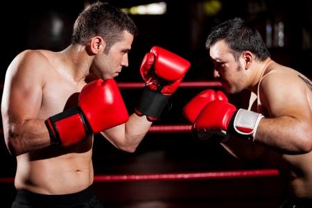boxeador: Boxeador fuerte y su oponente durante una pelea en el cuadro de un anillo