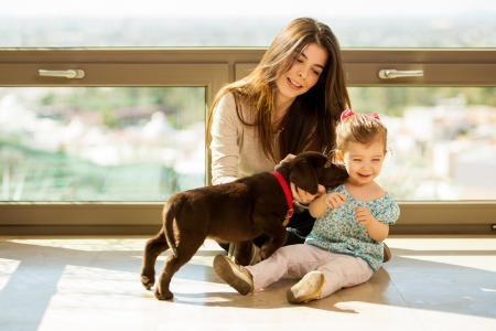 latin people: Beautiful little girl and her mom getting some puppy love and kisses from her new brown Labrador