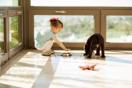feed up: Pretty little girl helping his dog pick up his food in the living room Stock Photo