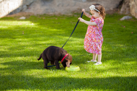 Cute baby girl spending time with her dog at a park on a sunny day photo