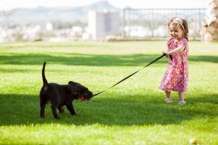 Cute little girl trying to get his puppy to come along by pulling its leash photo