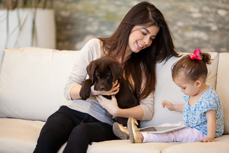family sofa: Pretty young babysitter looking after a puppy and a little girl