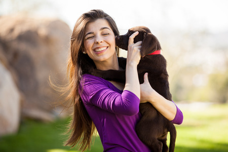 Cute brown Lab and its female owner having fun together outdoors in a park photo