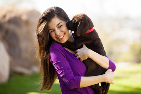 dog park: Cute Hispanic woman getting kissed and licked by her brown Labrador Stock Photo