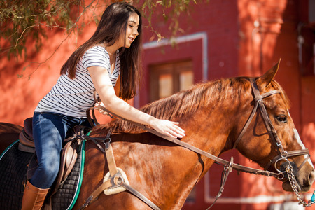 horseback: Cute Latin brunette riding a horse and petting him on a sunny day Stock Photo
