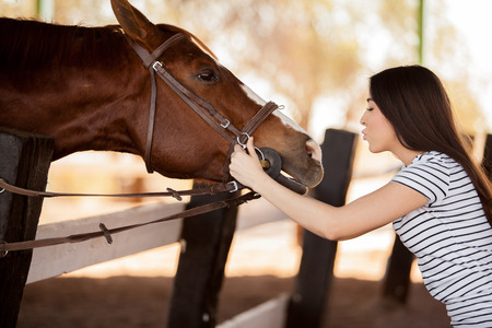 woman horse: Pretty young woman about to kiss a horse in a ranch Stock Photo