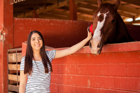 Cute young brunette brushing and grooming a horse in a stable 写真素材