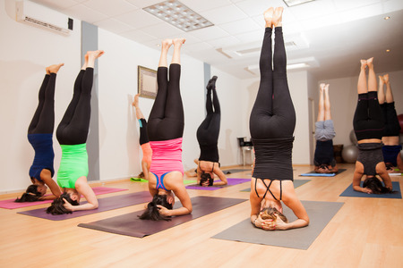 Wide view of a large group of young people doing  a headstand in a yoga studio