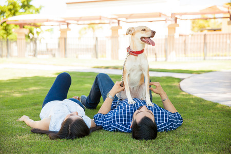 people relaxing: Young couple lying on the grass at a park while their dog wants to go for a run and play