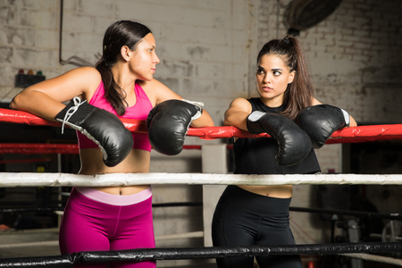 Young Hispanic women standing side by side and leaning on the ropes getting ready to fight in a boxing ring Imagens