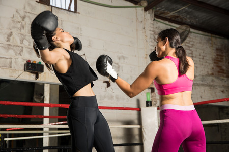 Strong female boxer knocking out her opponent with an uppercut while fighting in a boxing ring Stok Fotoğraf