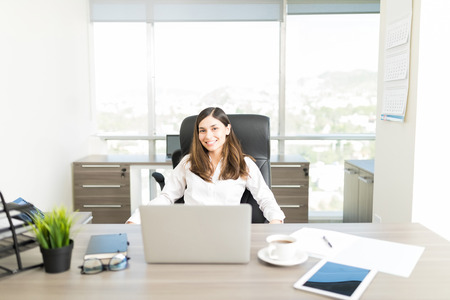 Portrait of smiling female financial adviser sitting at desk in office