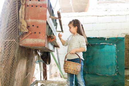 Nettes Mädchen, das Eier vom Hühnerstall in den Korb auf der Geflügelfarm sammelt