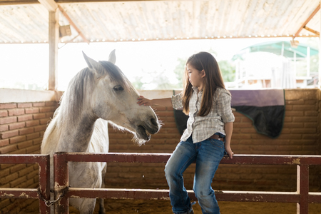 Cute girl in casuals petting white equine while sitting on fence at ranch Banco de Imagens - 114073691