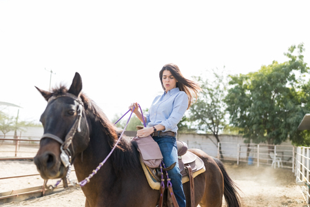 Adventurous woman trying to balance on horse at ranch during sunny day