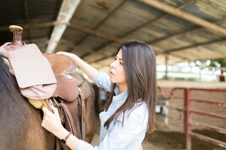 Caucasian mid adult woman adjusting a saddle on her brown horse before for a ride
