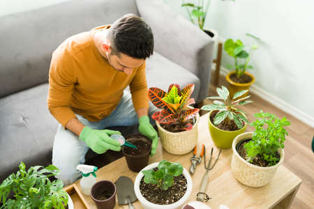 Adult man enjoying a leisure day at home and doing his gardening hobby. Attractive man in his 30s using fertilizer on his green plants 版權商用圖片