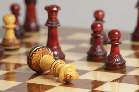 surrender: King surrender on a chessboard  Stock Photo