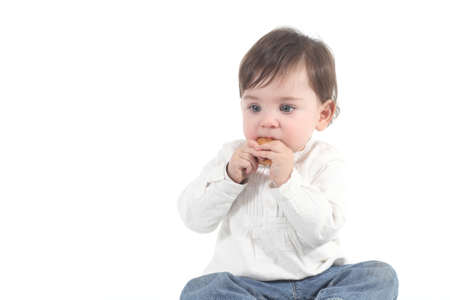 absorbed: Baby absorbed eating a cookie on a white isolated background                Stock Photo