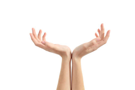 Hands of a woman with palms up isolated on a white background              photo