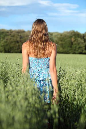 woman back view: Back view of a woman walking across an oat meadow with the blue sky in the background
