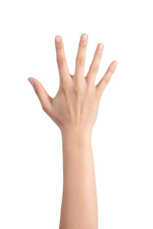 five fingers: Woman hand showing the five fingers isolated on a white background