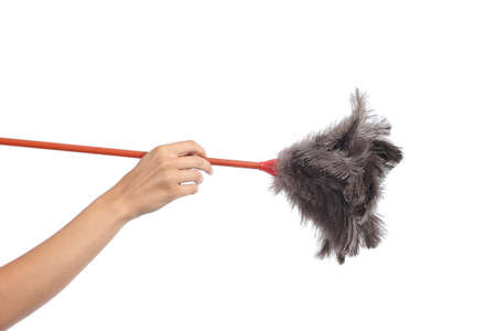 Woman hand holding a duster clean isolated on a white background              photo