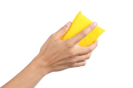 manos limpias: Mano de mujer sosteniendo una esponja de limpieza aislado en un fondo blanco