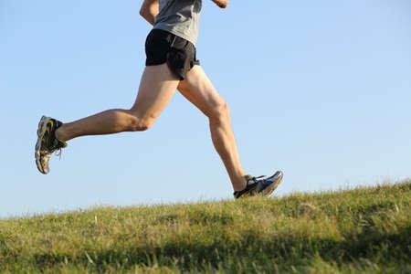 hacer footing: Vista lateral de un Piernas basculador se ejecutan en la hierba con el horizonte en el fondo